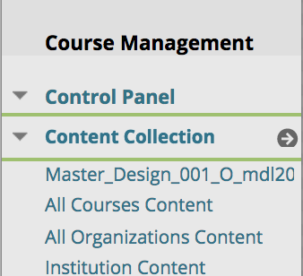 file name found under Content Collection in Blackboard